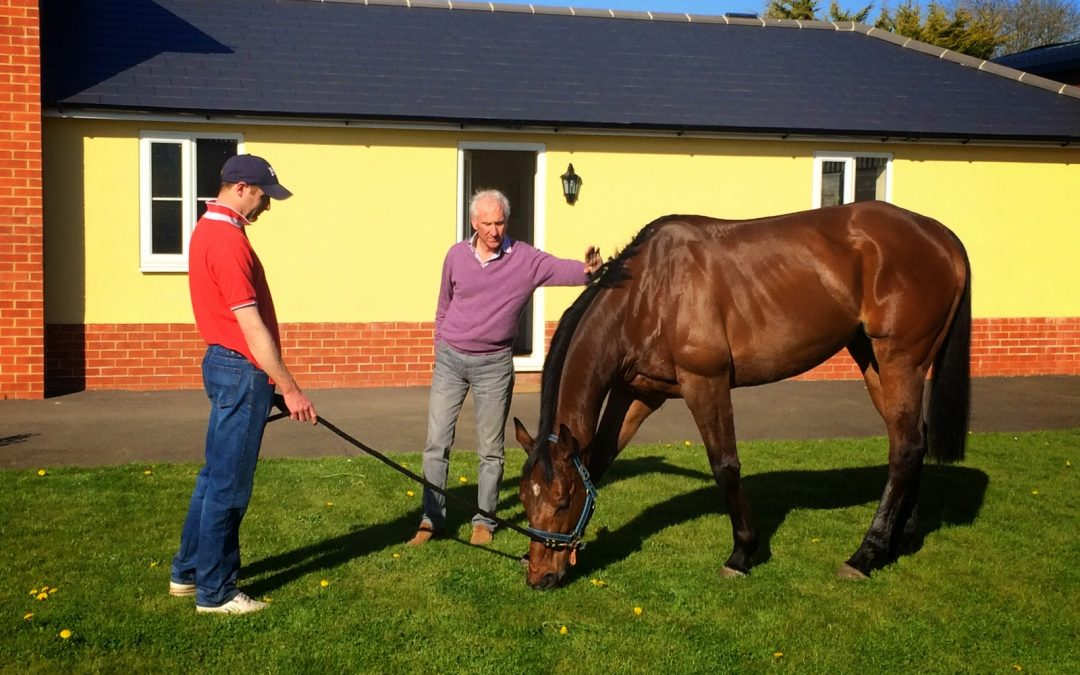SEVENTH SKY OFF ON HIS HOLS … WHAT A STAR!